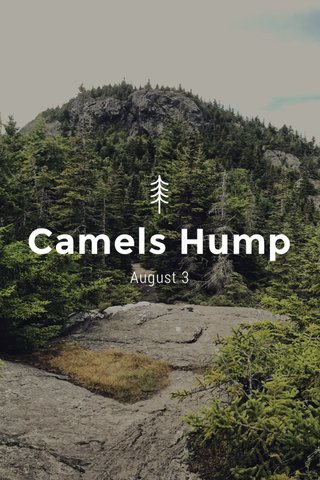 Camels Hump August 3