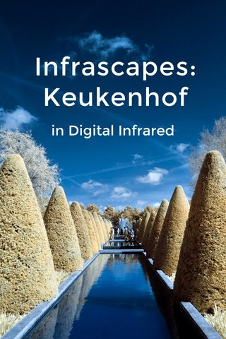 Infrascapes: Keukenhof in Digital Infrared