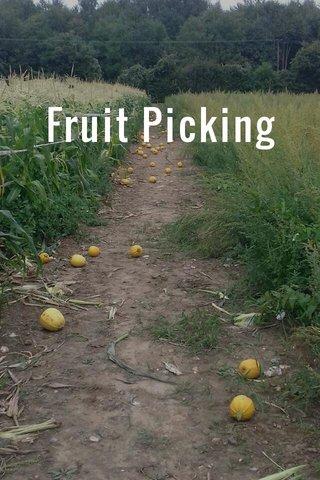 Fruit Picking
