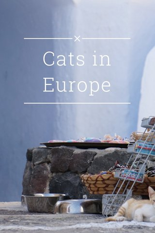 Cats in Europe