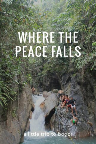 WHERE THE PEACE FALLS a little trip to bogor