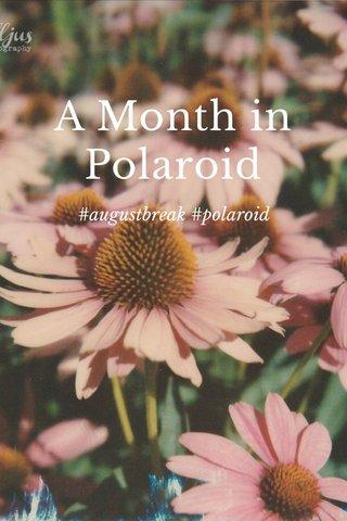 A Month in Polaroid #augustbreak #polaroid