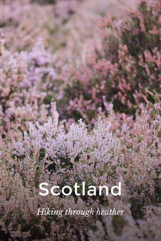 Scotland Hiking through heather