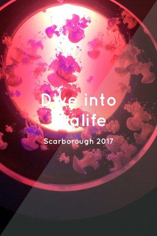 Dive into sealife Scarborough 2017