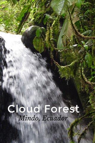 Cloud Forest Mindo, Ecuador