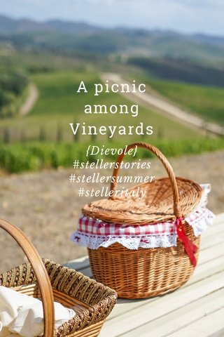A picnic among Vineyards {Dievole} #stellerstories #stellersummer #stelleritaly