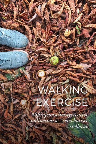 WALKING EXERCISE #5ftinfconsciouslycreative #onlinecourse #seewhatisee #stelleruk