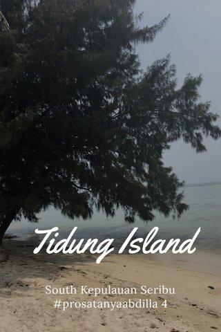 Tidung Island South Kepulauan Seribu #prosatanyaabdilla 4