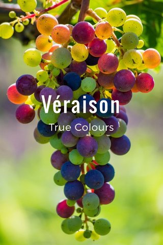 Véraison True Colours