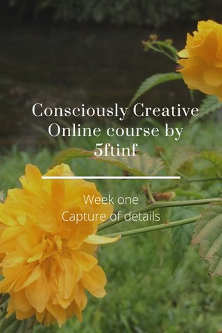 Consciously Creative Online course by 5ftinf Week one Capture of details