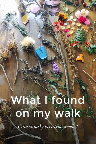 What I found on my walk Consciously creative week 1