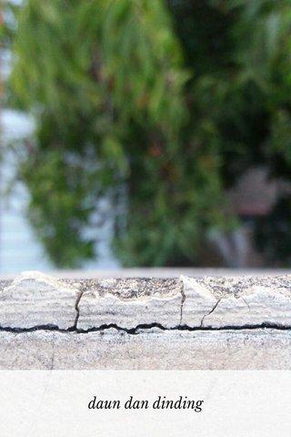 daun dan dinding