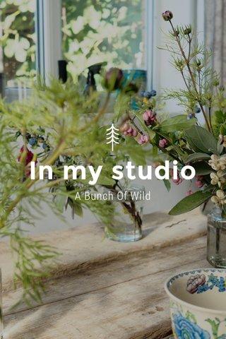 In my studio A Bunch Of Wild