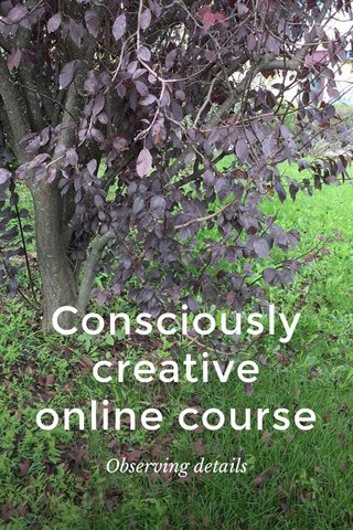 Consciously creative online course Observing details