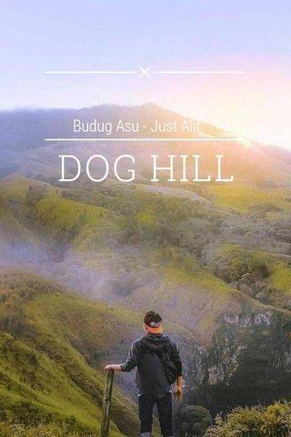 DOG HILL Budug Asu - Just Alif
