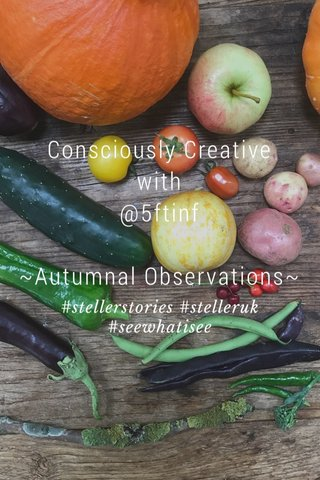 Consciously Creative with @5ftinf ~Autumnal Observations~ #stellerstories #stelleruk #seewhatisee