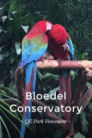 Bloedel Conservatory ~ QE Park Vancouver ~