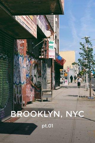 BROOKLYN, NYC pt.01