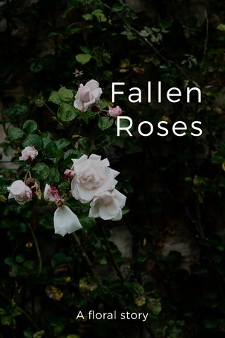 Fallen Roses A floral story