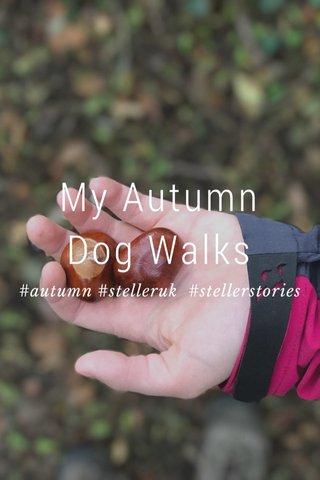 My Autumn Dog Walks #autumn #stelleruk #stellerstories