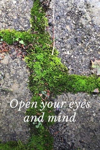 Open your eyes and mind