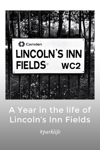 A Year in the life of Lincoln's Inn Fields #parklife