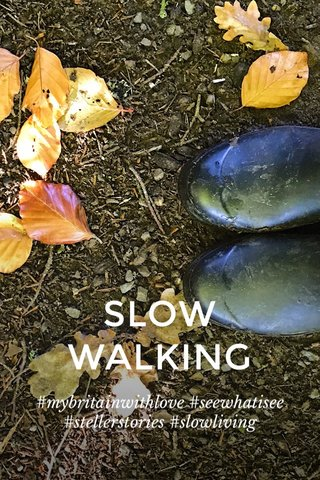 SLOW WALKING #mybritainwithlove #seewhatisee #stellerstories #slowliving