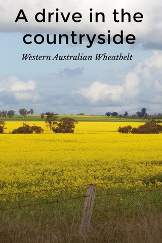 A drive in the countryside Western Australian Wheatbelt
