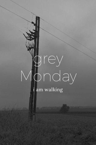 grey Monday i am walking