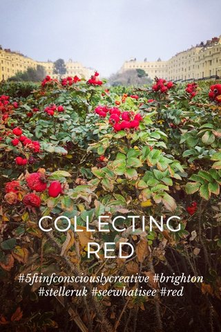 COLLECTING RED #5ftinfconsciouslycreative #brighton #stelleruk #seewhatisee #red