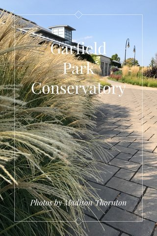 Garfield Park Conservatory Photos by Madison Thornton
