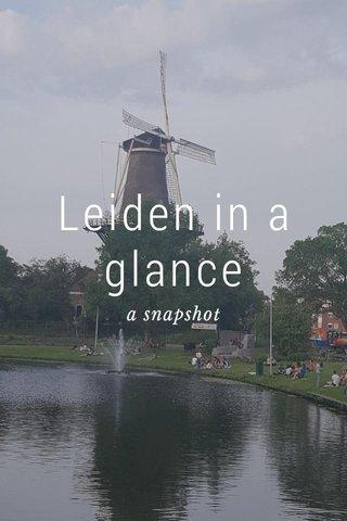 Leiden in a glance a snapshot