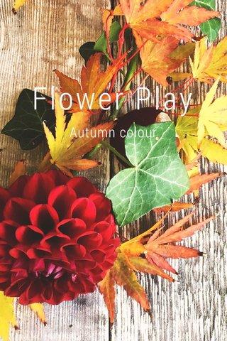 Flower Play Autumn colour