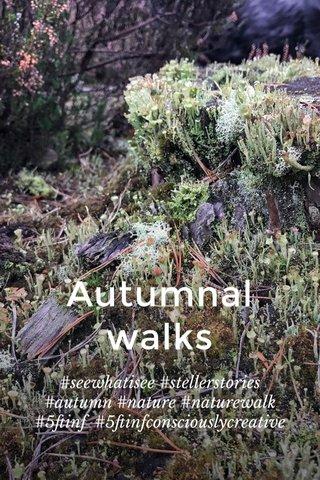 Autumnal walks #seewhatisee #stellerstories #autumn #nature #naturewalk #5ftinf #5ftinfconsciouslycreative