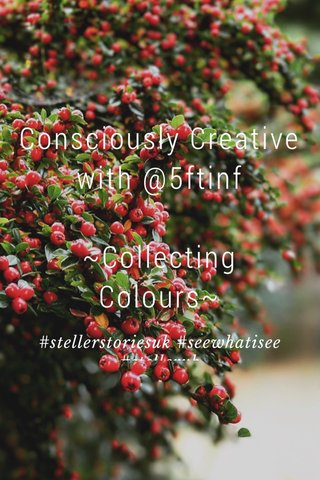 Consciously Creative with @5ftinf ~Collecting Colours~ #stellerstoriesuk #seewhatisee #stelleruk