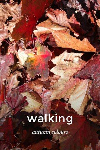 walking autumn colours