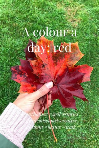 A colour a day: red #seewhatisee #stellerstories #5ftinfconsciouslycreative #autumn #nature #walk