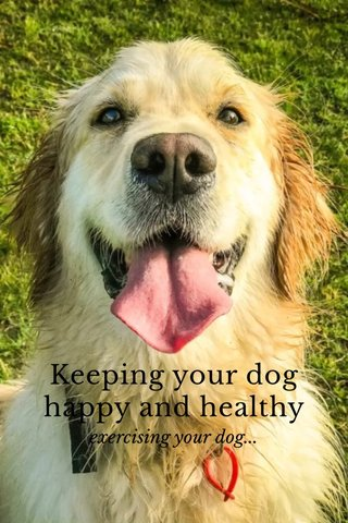 Keeping your dog happy and healthy exercising your dog...