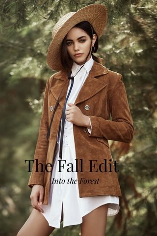 The Fall Edit Into the Forest