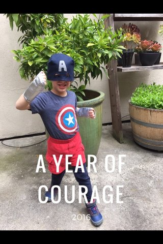 A YEAR OF COURAGE 2016