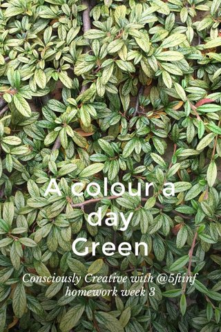 A colour a day Green Consciously Creative with @5ftinf homework week 3