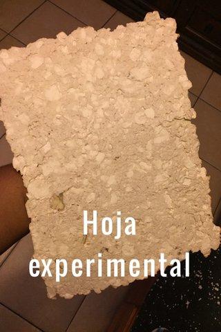 Hoja experimental