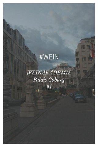#WEIN WEINAKADEMIE Palais Coburg #1