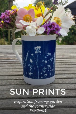 SUN PRINTS Inspiration from my garden and the countryside #stelleruk