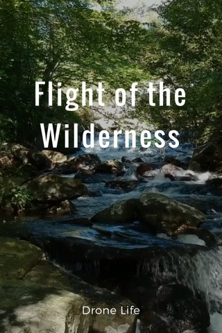 Flight of the Wilderness Drone Life