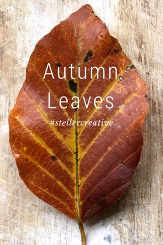 Autumn Leaves #stellercreative