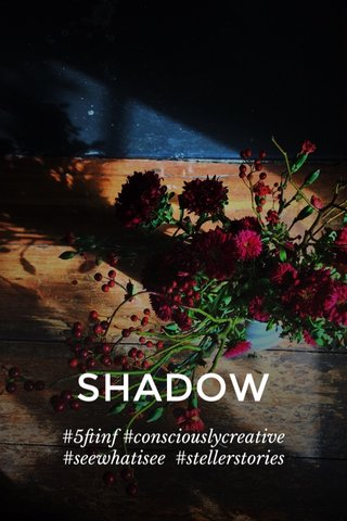 SHADOW #5ftinf #consciouslycreative #seewhatisee #stellerstories