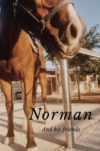 Norman And his friends