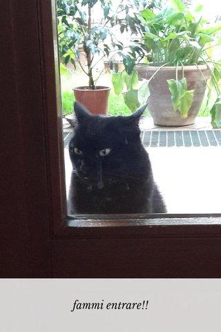 fammi entrare!!