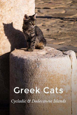 Greek Cats Cycladic & Dodecanese Islands